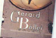 Skin Treatment - Gerard Bollei