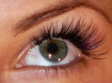 Beauty Salons - Flirty Girl Lash Studio